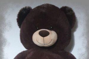 El osito Teddy.